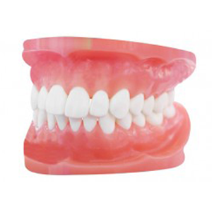 Denture Treatments Fredericksburg